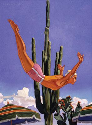 Dennis Ziemienski     Desert Plunge