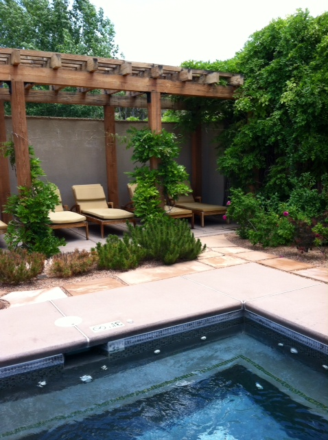 Chaise lounges by the jacuzzi at Four Seasons Rancho Encantado today.